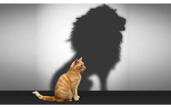 ۱۱ راه حل ساده برای افزایش اعتماد به نفس