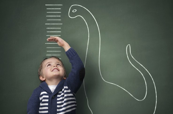 تعریف شرکت های با رشد سریع: آیا همه انواع رشد یکسان هستند؟